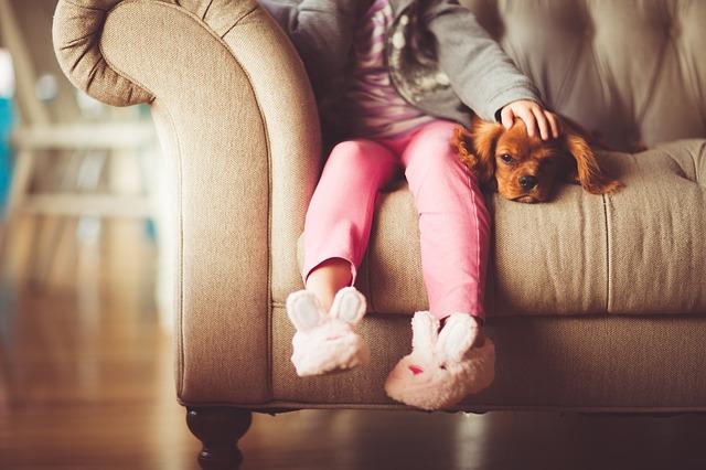 Životný štýl, ako vás domáci mazlíček?